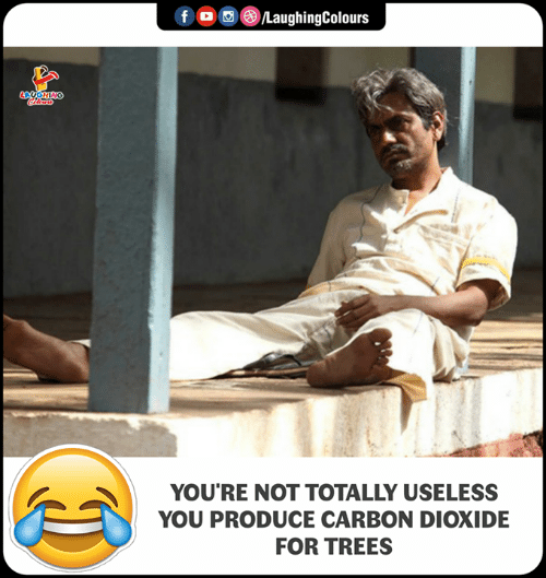 carbon dioxide: o  ,e)/LaughingColours  YOU'RE NOT TOTALLY USELESS  YOU PRODUCE CARBON DIOXIDE  FOR TREES