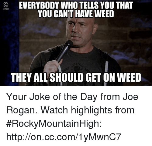 joke of the day: O EVERYBODY WHO TELLS YOU THAT  YOU CANT HAVE WEED  THEY ALLSHOULD GETON WEED Your Joke of the Day from Joe Rogan. Watch highlights from #RockyMountainHigh: http://on.cc.com/1yMwnC7