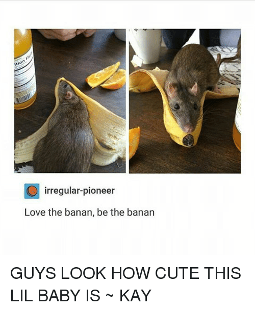 Cute, Love, and Tumblr: O irregular-pioneer  Love the banan, be the banan GUYS LOOK HOW CUTE THIS LIL BABY IS ~ KAY