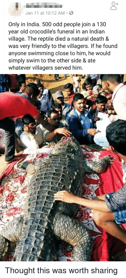 villagers: O+  Jan 11 at 10:12 AM S  Only in India. 500 odd people join a 130  year old crocodile's funeral in an Indian  village. The reptile died a natural death &  was very friendly to the villagers. If he found  anyone swimming close to him, he would  simply swim to the other side & ate  whatever villagers served him. Thought this was worth sharing