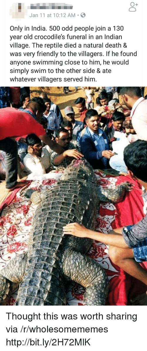 villagers: O+  Jan 11 at 10:12 AM S  Only in India. 500 odd people join a 130  year old crocodile's funeral in an Indian  village. The reptile died a natural death &  was very friendly to the villagers. If he found  anyone swimming close to him, he would  simply swim to the other side & ate  whatever villagers served him. Thought this was worth sharing via /r/wholesomememes http://bit.ly/2H72MlK