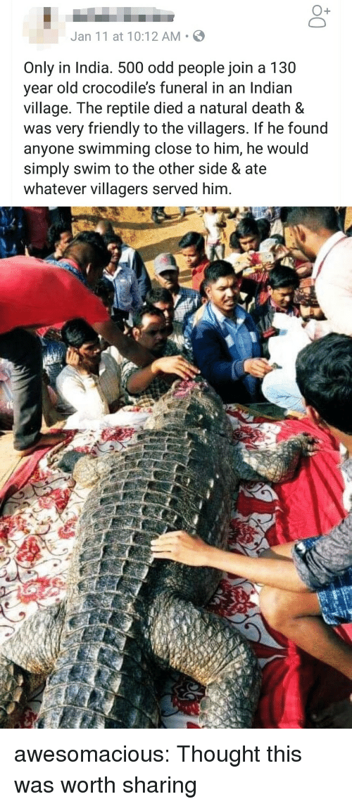 villagers: O+  Jan 11 at 10:12 AM S  Only in India. 500 odd people join a 130  year old crocodile's funeral in an Indian  village. The reptile died a natural death &  was very friendly to the villagers. If he found  anyone swimming close to him, he would  simply swim to the other side & ate  whatever villagers served him. awesomacious:  Thought this was worth sharing