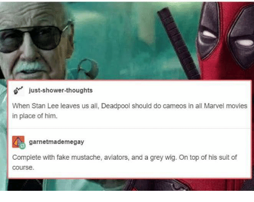 Aviators: o just-shower-thoughts  When Stan Lee leaves us all, Deadpool should do cameos in all Marvel movies  in place of him.  garnetmademegay  Complete with fake mustache, aviators, and a grey wig. On top of his suit of  course.