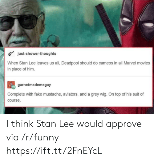 Aviators: o just-shower-thoughts  When Stan Lee leaves us all, Deadpool should do cameos in all Marvel movies  in place of him.  garnetmademegay  Complete with fake mustache, aviators, and a grey wig. On top of his suit of  course I think Stan Lee would approve via /r/funny https://ift.tt/2FnEYcL