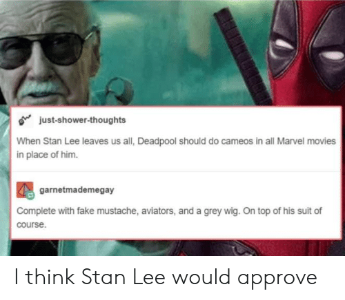 Aviators: o just-shower-thoughts  When Stan Lee leaves us all, Deadpool should do cameos in all Marvel movies  in place of him.  garnetmademegay  Complete with fake mustache, aviators, and a grey wig. On top of his suit of  course I think Stan Lee would approve