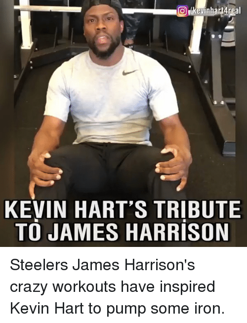 Kevin Hart, Memes, and 🤖: O Kevin hartAreal  KEVIN HART'S TRIBUTE  TO JAMES HARRISON Steelers James Harrison's crazy workouts have inspired Kevin Hart to pump some iron.
