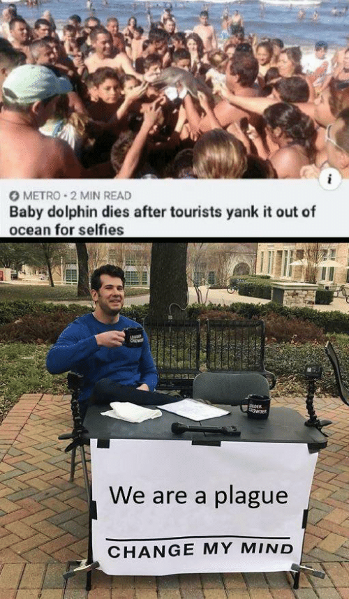 Dolphin: O METRO 2 MIN READ  Baby dolphin dies after tourists yank it out of  ocean for selfies  CRp  DuDER  owER  We are a plague  CHANGE MY MIND  38