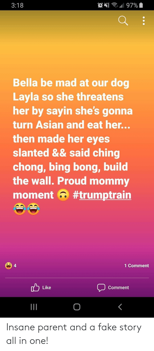 build-the-wall: O N 97%  3:18  Bella be mad at our dog  Layla so she threatens  her by sayin she's gonna  turn Asian and eat her...  then made her eyes  slanted && said ching  chong, bing bong, build  the wall. Proud mommy  moment a #trumptrain  1 Comment  Like  Comment Insane parent and a fake story all in one!
