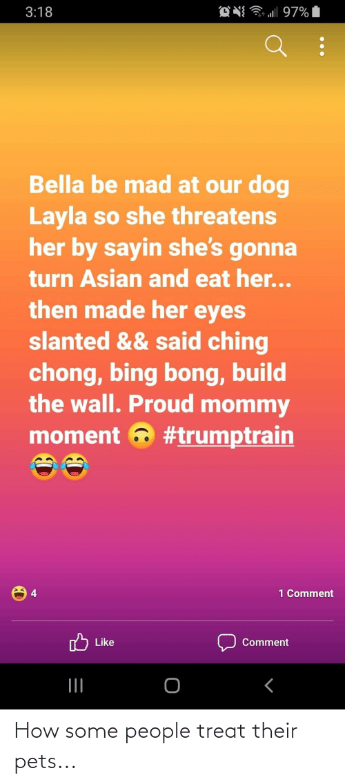 build-the-wall: O N 97%  3:18  Bella be mad at our dog  Layla so she threatens  her by sayin she's gonna  turn Asian and eat her...  then made her eyes  slanted && said ching  chong, bing bong, build  the wall. Proud mommy  moment a #trumptrain  1 Comment  Like  Comment How some people treat their pets...