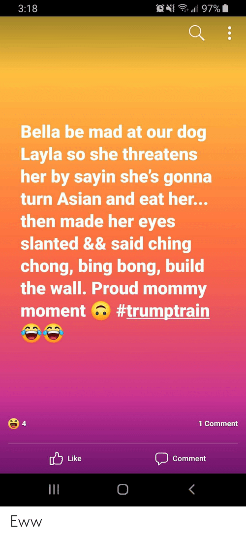 build-the-wall: O N 97%  3:18  Bella be mad at our dog  Layla so she threatens  her by sayin she's gonna  turn Asian and eat her...  then made her eyes  slanted && said ching  chong, bing bong, build  the wall. Proud mommy  moment a #trumptrain  1 Comment  Like  Comment  |II Eww