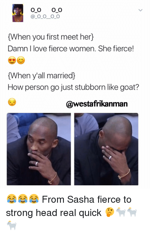 Head, Love, and Memes: O O O O  O O O O  {When you first meet her  Damn I love fierce women. She fierce!  {When y'all married  How person go just stubborn like goat?  @westafrikanman 😂😂😂 From Sasha fierce to strong head real quick 🤔🐐🐐🐐