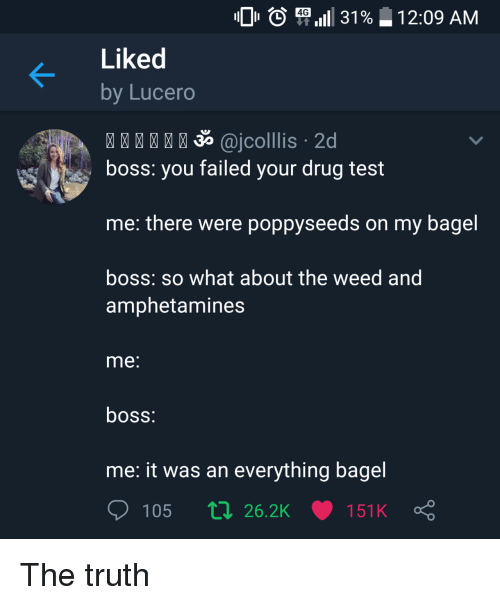 Drug Test: O ( P,111 31%  4G  1 2:09 AM  Liked  by Lucero  35 @jcolllis 2d  boss: you failed your drug test  me: there were poppyseeds on my bagel  boss: so what about the weed and  amphetamines  me  boss  me: it was an everything bagel  105 п 26.2K 151 K The truth