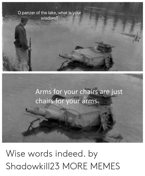 chairs: O panzer of the lake, what is your  wisdom?  Arms for your chairs  chairs for  are just  your arms. Wise words indeed. by Shadowkill23 MORE MEMES