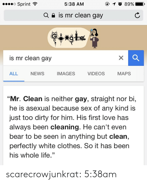 "Asexual: o Sprint  @ 10 89%  5:38 AM  is mr clean gay  Q  is mr clean gay  NEWS  IMAGES  MAPS  ALL  VIDEOS  ""Mr. Clean is neither gay, straight nor bi,  he is asexual because sex of any kind is  just too dirty for him. His first love has  always been cleaning. He can't even  bear to be seen in anything but clean,  perfectly white clothes. So it has been  his whole life."" scarecrowjunkrat: 5:38am"