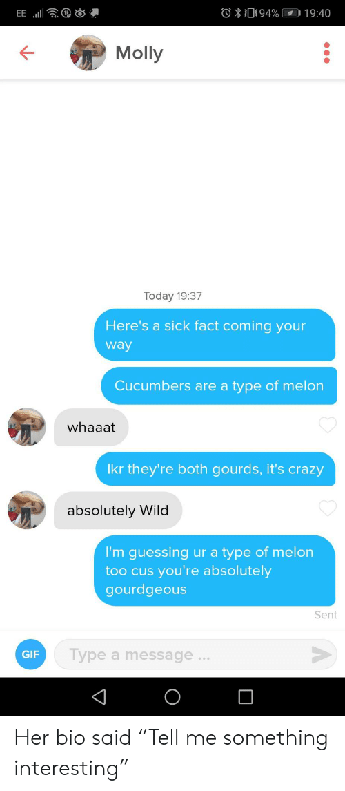 """molly: O094%  19:40  EE  Molly  Today 19:37  Here's a sick fact coming your  way  Cucumbers are a type of melon  whaaat  Ikr they're both gourds, it's crazy  absolutely Wild  I'm guessing ur a type of melon  too cus you're absolutely  gourdgeous  Sent  Type a message...  GIF  O Her bio said """"Tell me something interesting"""""""