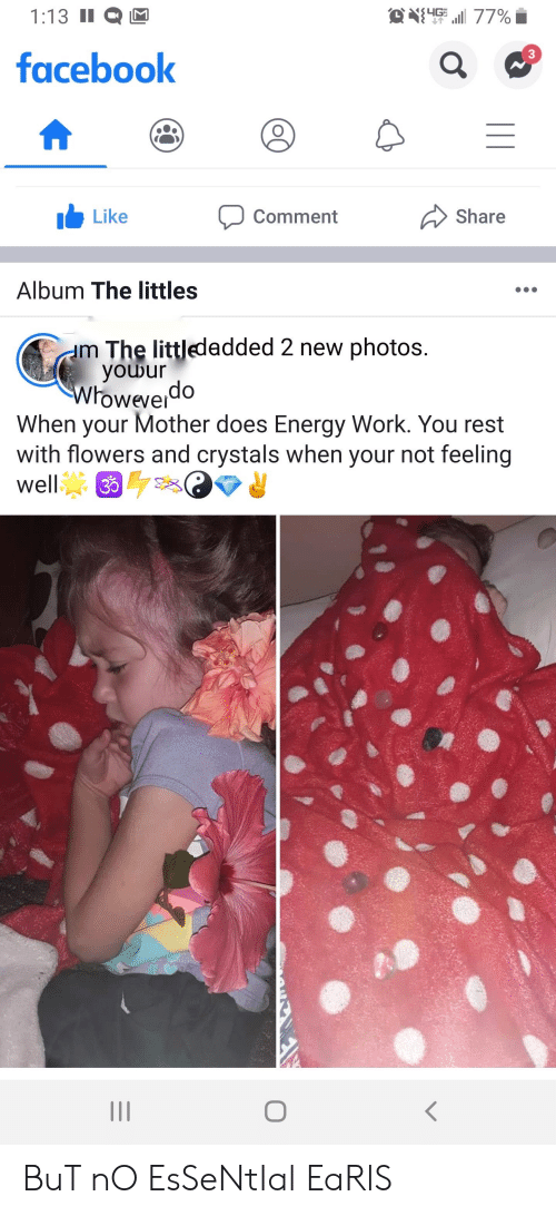 Littles: O411 77%  1:13 II  facebook  Like  Share  Comment  Album The littles  m The littledadded 2 new photos.  youur  Wroweverdo  When your Mother does Energy Work. You rest  with flowers and crystals when your not feeling  well  3 BuT nO EsSeNtIal EaRlS
