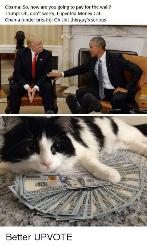 money cat: Obama: So, how are you going to pay for the wall?  Trump: Oh, don't worry, l upvoted Money Cat  Obama (under breath): Oh shit this guy's serious   go  ク Better UPVOTE