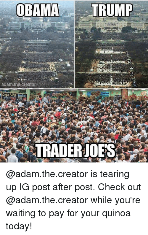 Memes, Obama, and Quinoa: OBAMA  TRUMP  adam the creator  TRADER JOES @adam.the.creator is tearing up IG post after post. Check out @adam.the.creator while you're waiting to pay for your quinoa today!
