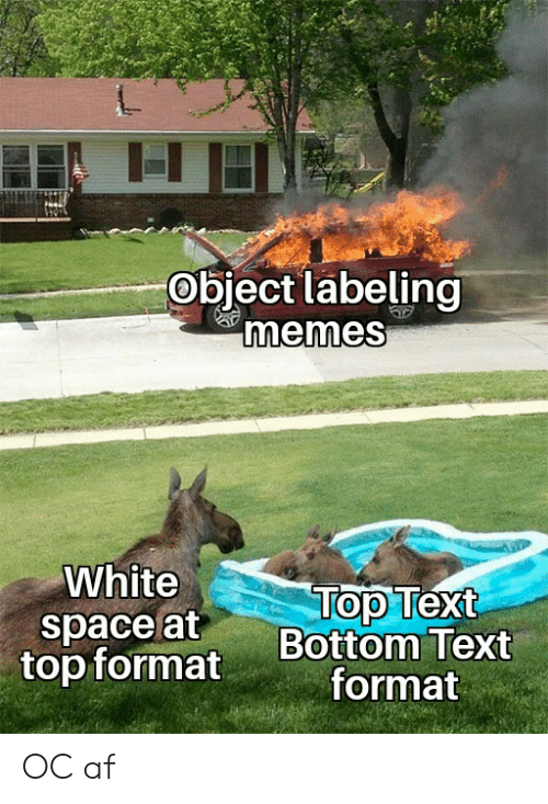 Top Text Bottom Text: Object labeling  memes  White  Top Text  Bottom Text  format  space at  top format OC af