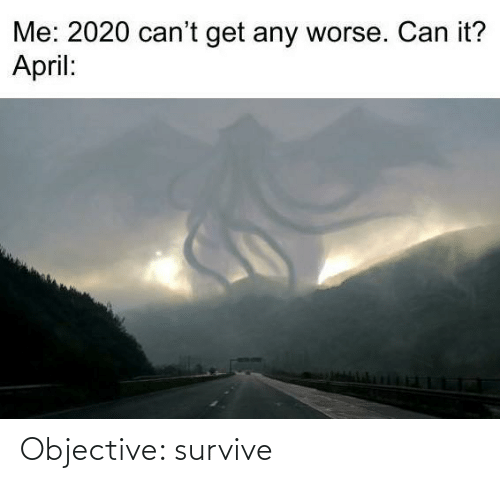 objective: Objective: survive