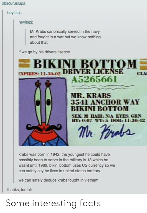 Bikini Bottom: obscuruslupa:  heyitspi:  heyitspi:  Mr Krabs canonically served in the navy  and fought in a war but we know nothing  about that  if we go by his drivers lisence  BIKINI BOTTOM  EXPIRES: 11-30-02 DRIVER LICENSE  A5265661  CLA  MR.KRABS  3541 ANCHOR WAY  BIKINI BOTTOM  SEX:M HAIR: N/A EYES:GRN  HT:0-07 WT: 5 DOB:11-30-42  krabs was brnin 1942. the youngest he could have  possibly been to serve in the military is 18 which he  wasnt until 1960. bikini bottom uses US currency so we  can safely say he lives in united states territory.  we can safely deduce krabs fought in vietnam  thanks, tumblr Some interesting facts