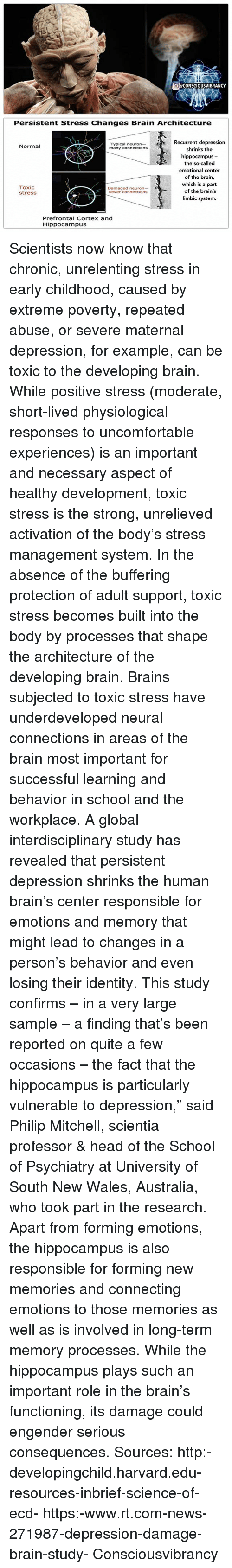 Brains Head And Memes OCCONSCIOUSVIBRANCY Persistent Stress Changes Brain Architecture Recurrent Depression Typical