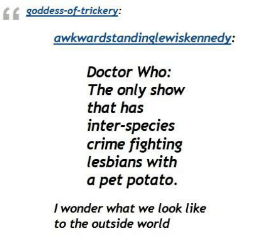 Crime, Lesbians, and Memes: oddess-off-tricke  awkward standinglewiskennedy:  Doctor Who:  The only show  that has  inter-species  crime fighting  lesbians with  a pet potato.  I wonder what we  look like  to the outside world