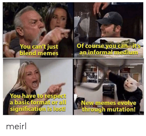 new memes: Of course you can it's  an informalmedium  You can't just  blend memes  You have to respect  a basic format or all  signification is lost!  New memes evolve  through mutation! meirl