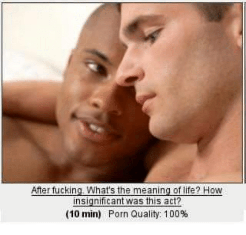Life Porn And Dank Memes Of Life How After Fuckin Whats The