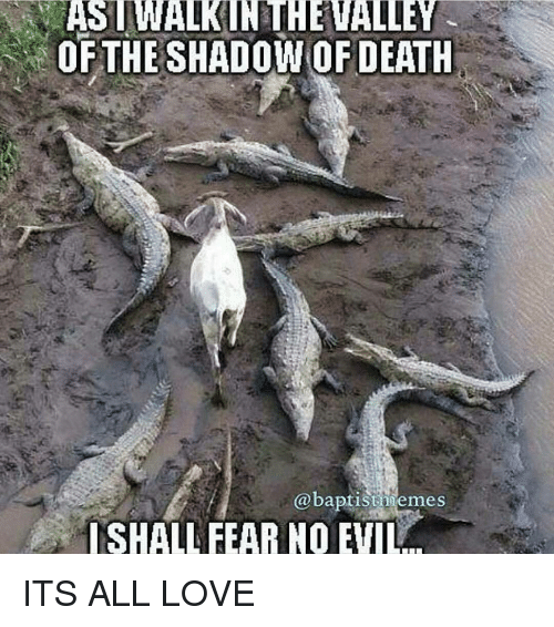 Memes, Baptist Memes, and 🤖: OF THESHADOW OF DEATH  @baptist memes  SHALL FEAR NO ITS ALL LOVE