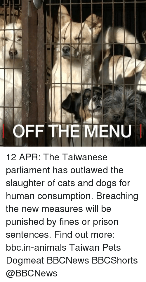 Animals, Cats, and Dogs: OFF THE MENU 12 APR: The Taiwanese parliament has outlawed the slaughter of cats and dogs for human consumption. Breaching the new measures will be punished by fines or prison sentences. Find out more: bbc.in-animals Taiwan Pets Dogmeat BBCNews BBCShorts @BBCNews