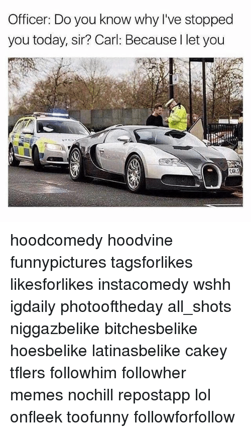 Lol, Memes, and Wshh: Officer: Do you know why I've stopped  you today, sir? Carl: Because l let you hoodcomedy hoodvine funnypictures tagsforlikes likesforlikes instacomedy wshh igdaily photooftheday all_shots niggazbelike bitchesbelike hoesbelike latinasbelike cakey tflers followhim followher memes nochill repostapp lol onfleek toofunny followforfollow