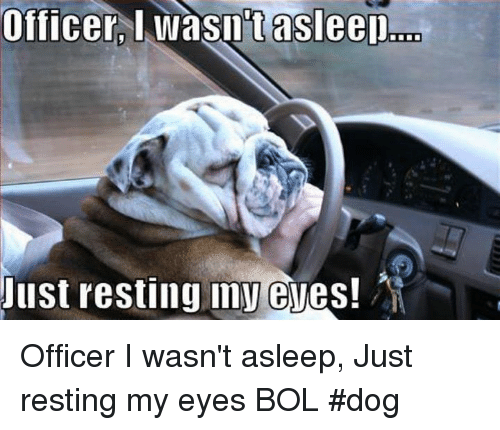 Memes, 🤖, and Dog: Officer  l  wasutasleer  asleeD...  Just resting my eves! Officer I wasn't asleep, Just resting my eyes   BOL #dog