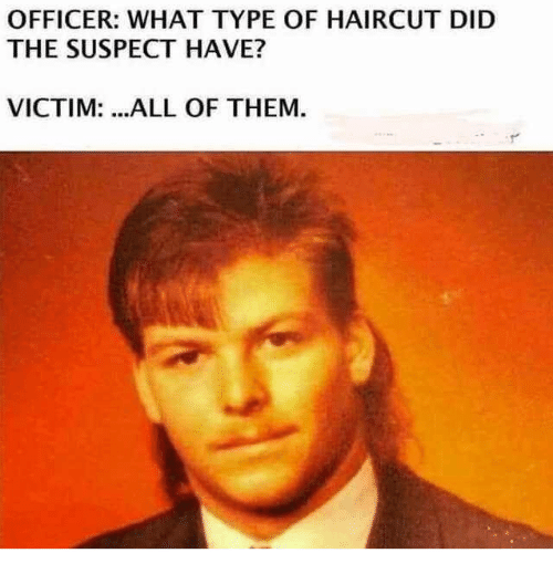 Dank, Haircut, and 🤖: OFFICER: WHAT TYPE OF HAIRCUT DID  THE SUSPECT HAVE?  VICTIM: .ALL OF THEM