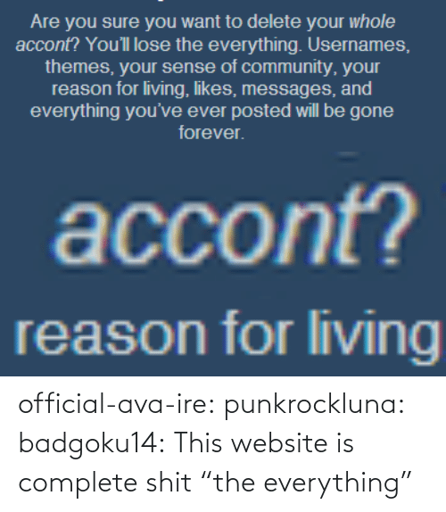 "ava: official-ava-ire: punkrockluna:  badgoku14:  This website is complete shit  ""the everything"""