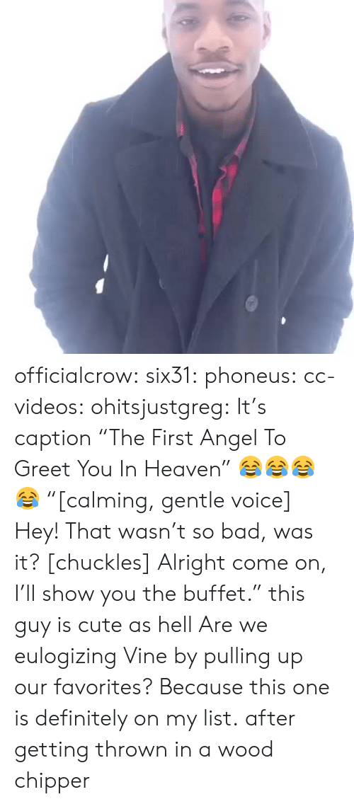 """The Buffet: officialcrow:  six31:  phoneus:  cc-videos:  ohitsjustgreg:  It's caption """"The First Angel To Greet You In Heaven"""" 😂😂😂😂  """"[calming, gentle voice] Hey! That wasn't so bad, was it? [chuckles] Alright come on, I'll show you the buffet.""""  this guy is cute as hell  Are we eulogizing Vine by pulling up our favorites? Because this one is definitely on my list.   after getting thrown in a wood chipper"""