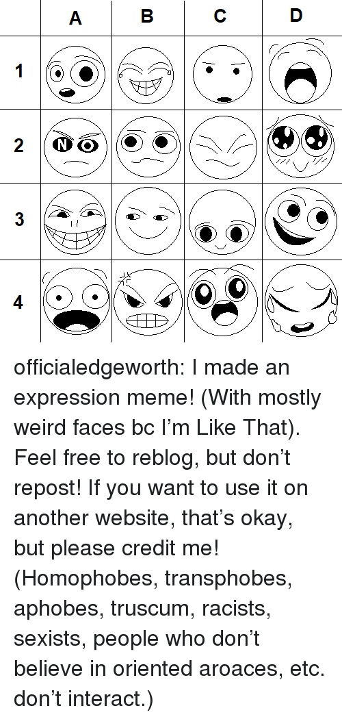 Repost If: officialedgeworth:  I made an expression meme! (With mostly weird faces bc I'm Like That). Feel free to reblog, but don't repost! If you want to use it on another website, that's okay, but please credit me!(Homophobes, transphobes, aphobes, truscum, racists, sexists, people who don't believe in oriented aroaces, etc. don't interact.)
