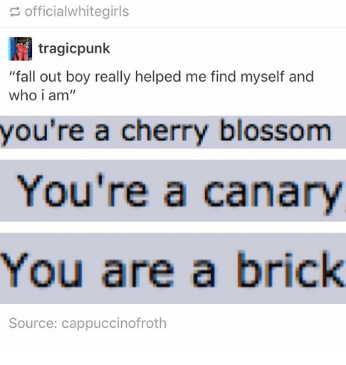 "Fall, Memes, and Fall Out Boy: officialwhitegirls  tragicpunk  ""fall out boy really helped me find myself and  who i am  you're a cherry blossom  You're a canary  You are a brick  Source: cappuccinofroth"
