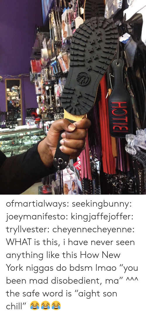 """Safe Word: ofmartialways:  seekingbunny:  joeymanifesto:   kingjaffejoffer:  tryllvester:  cheyennecheyenne:  WHAT is this, i have never seen anything like this  How New York niggas do bdsm  lmao """"you been mad disobedient, ma""""   ^^^ the safe word is """"aight son chill""""     😂😂😂"""