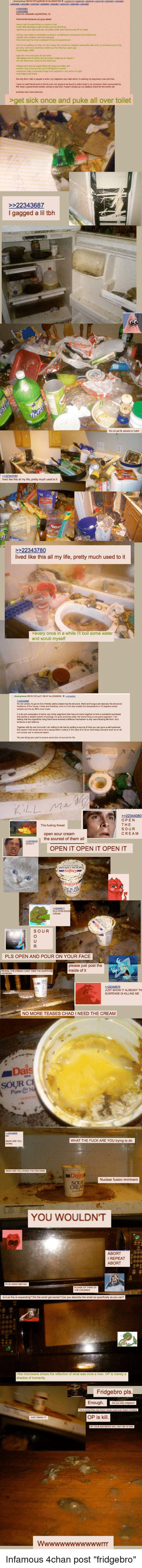 "Infamous, Neckbeard Things, and Gag: oget sick once and puke all over toilet  I gagged a lil bh  YOU WOULDNT Infamous 4chan post ""fridgebro"""