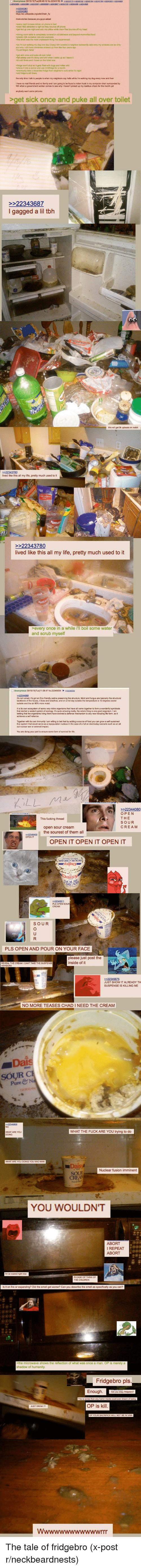 Greentext, Tales Of, and Tales: oget sick once and puke all over toilet  I gagged a lil bh  YOU WOULDNT The tale of fridgebro (x-post r/neckbeardnests)