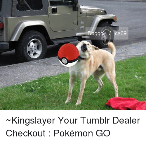 Dank, Pokemon, and Tumblr: ogg  CP69 ~Kingslayer Your Tumblr Dealer  Checkout : Pokémon GO