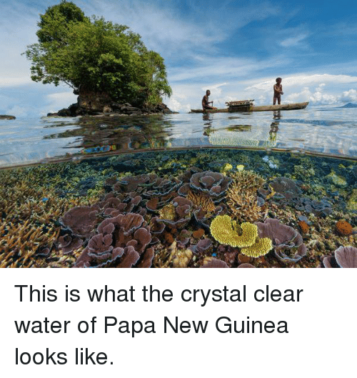 clear water: ogle  age This is what the crystal clear water of Papa New Guinea looks like.