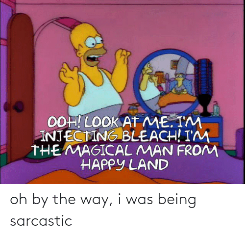 by the way: oh by the way, i was being sarcastic