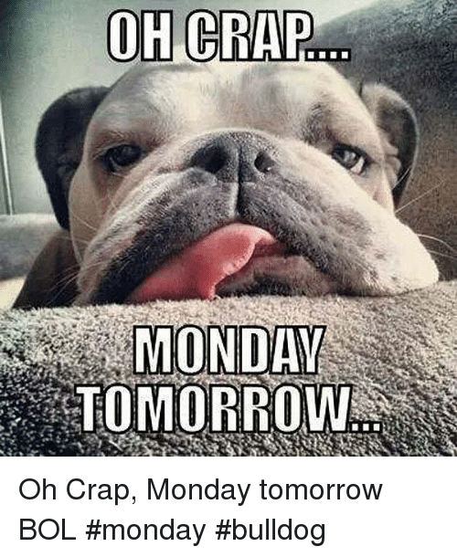 Memes, Bulldog, and Tomorrow: OH CRAP  MONDAY  TOMORROW Oh Crap, Monday tomorrow            BOL  #monday #bulldog
