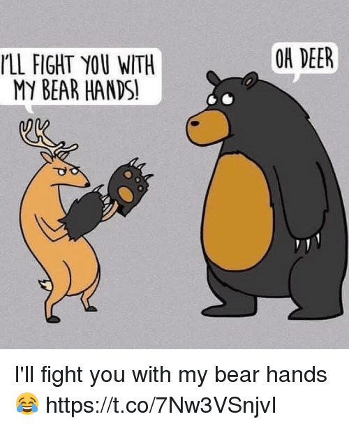 Deer, Memes, and Bear: OH DEER  LL FIGHT YOU WITH  MY BEAR HANDS! I'll fight you with my bear hands 😂 https://t.co/7Nw3VSnjvI