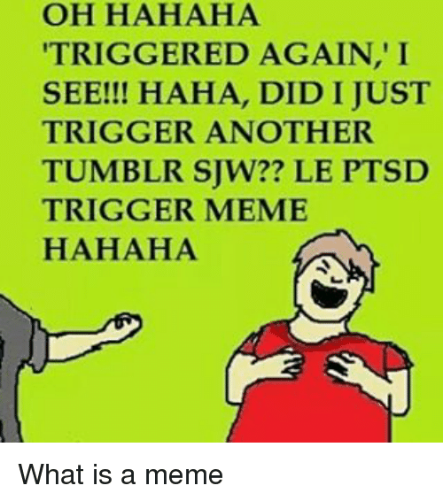 Meme, Memes, and Tumblr: OH HAHAHA  TRIGGERED AGAIN, I  SEE!!! HAHA, DID I JUST  TRIGGER ANOTHER  TUMBLR SUW?? LE PTSD  TRIGGER MEME  HAHAHA What is a meme