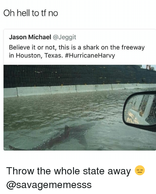 sharking: Oh hell to tf no  Jason Michael @Jeggit  Believe it or not, this is a shark on the freeway  in Houston, Texas. Throw the whole state away 😑 @savagememesss