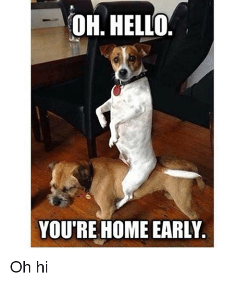 Hello, Home, and Girl Memes: OH HELLO.  YOU'RE HOME EARLY Oh hi