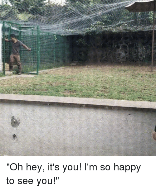 """Happy, You, and Hey: """"Oh hey, it's you! I'm so happy to see you!"""""""
